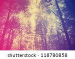 photo with green forest | Shutterstock . vector #118780858