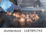 chef cook grilled octopuses.... | Shutterstock . vector #1187891743