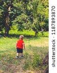 the little boy in a summer... | Shutterstock . vector #1187893870