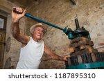 grape harvest  old winemaker...   Shutterstock . vector #1187895310