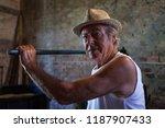 grape harvest  old winemaker...   Shutterstock . vector #1187907433