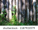 wooden poles lined up with wild ... | Shutterstock . vector #1187923579