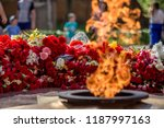 many flowers as a symbol of...   Shutterstock . vector #1187997163