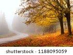 autumn road. autumn landscape....   Shutterstock . vector #1188095059