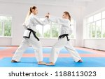 two young athletic girls...   Shutterstock . vector #1188113023
