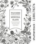 wild flowers. herbal tea.... | Shutterstock .eps vector #1188178276