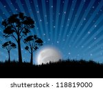 abstract ray night in nature...   Shutterstock . vector #118819000