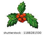 christmas berry holly ilex...