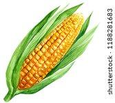 watercolor illustration  corn... | Shutterstock . vector #1188281683