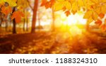 autumn leaves on the sun and... | Shutterstock . vector #1188324310