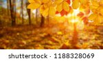 autumn leaves on the sun and... | Shutterstock . vector #1188328069