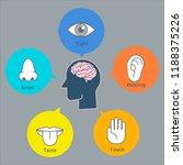 five human senses demonstration ... | Shutterstock .eps vector #1188375226