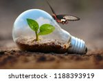 plant growing inside lightblub... | Shutterstock . vector #1188393919