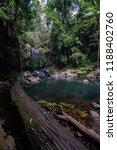 curtis falls in mount tamborine | Shutterstock . vector #1188402760