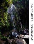 curtis falls in mount tamborine | Shutterstock . vector #1188402793