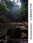 curtis falls in mount tamborine | Shutterstock . vector #1188402796