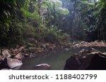 curtis falls in mount tamborine | Shutterstock . vector #1188402799