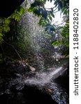 curtis falls in mount tamborine | Shutterstock . vector #1188402820