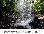 curtis falls in mount tamborine | Shutterstock . vector #1188402823