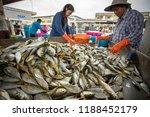 samutsakorn thailand  ... | Shutterstock . vector #1188452179