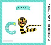 letter c lowercase cute... | Shutterstock .eps vector #1188470053
