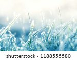 grass in the frost. frost on... | Shutterstock . vector #1188555580