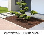 residential home with neat and... | Shutterstock . vector #1188558283