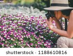 young beautiful girl tourist... | Shutterstock . vector #1188610816
