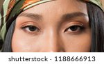 closeup macro portrait of... | Shutterstock . vector #1188666913