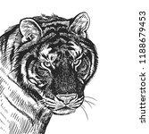 tiger. realistic portrait of... | Shutterstock .eps vector #1188679453