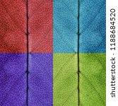 leaf texture in mirroring in 4... | Shutterstock . vector #1188684520