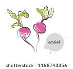 vector hand drawn illustration... | Shutterstock .eps vector #1188743356
