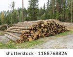 stack of felled trees in the... | Shutterstock . vector #1188768826