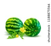 fresh  nutritious and tasty... | Shutterstock .eps vector #1188875566