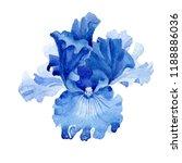 watercolor blue iris flower....   Shutterstock . vector #1188886036