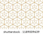 the geometric pattern with... | Shutterstock .eps vector #1189009639
