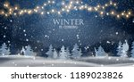 Winter is coming. Snowy night with firs, coniferous forest, light garlands, falling snow, Woodland landscape for winter and new year holidays. Holiday winter landscape. Christmas vector background.