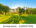 beautiful garden in daytime... | Shutterstock . vector #1189037296
