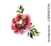 watercolor flower hand drawn... | Shutterstock . vector #1189065196