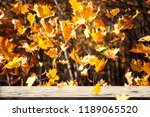 autumn leaves fall. beauty... | Shutterstock . vector #1189065520