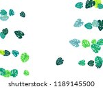 teal green tropical jungle... | Shutterstock .eps vector #1189145500