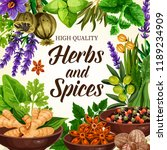 herbs and spices  organic... | Shutterstock .eps vector #1189234909