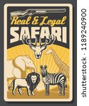 safari african hunting vector... | Shutterstock .eps vector #1189240900