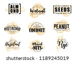 exotic nuts lettering vector... | Shutterstock .eps vector #1189245019
