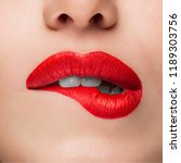 close up beauty portrait model... | Shutterstock . vector #1189303756