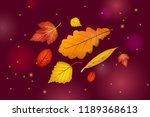 autumn leaves set isolated on... | Shutterstock .eps vector #1189368613