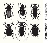 six black beetles. collection. | Shutterstock .eps vector #1189401346