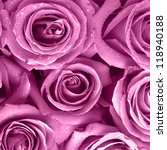 Stock photo  roses background 118940188