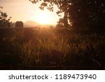 sunset view in the forest | Shutterstock . vector #1189473940
