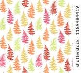 fern frond herbs  tropical... | Shutterstock .eps vector #1189484419